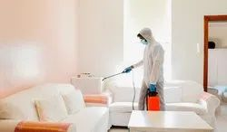 Home / Office Disinfection Services
