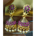 Pink Fancy Ladies Earrings