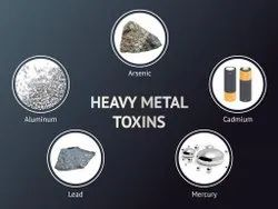 Heavy Metals Testing Services