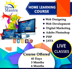Website Designing Company & Website Designing Training Company Ambala India - Shinemantra