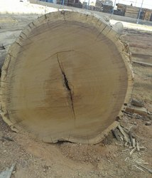 Ipe Wood Ipe Lumber Latest Price Manufacturers Amp Suppliers