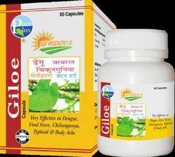 Giloe Tablets