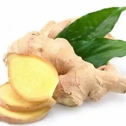 Ginger Sp. Flavour