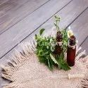 Herbal Hair Oil Testing Services