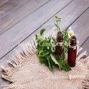 Herbal Hair Oil Testing Services