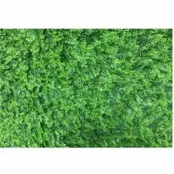 Mat	F-1 Artificial  Wall Grass