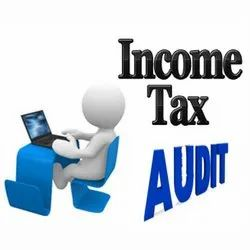 Income Tax Audit Consultant
