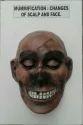 Forensic Mummification Models