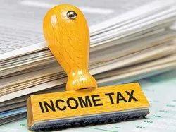 CA Income Tax Return Consultant, Company & Individual & LLP
