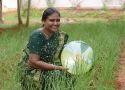 Sprinkler Irrigation Kit - 1 Acre Land