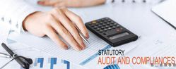 Statutory Audit and Compliance