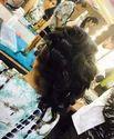 Hair Design Services
