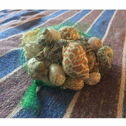 Natural Materials Mixed Seashell Craft, For Fish Tank Decor & Display