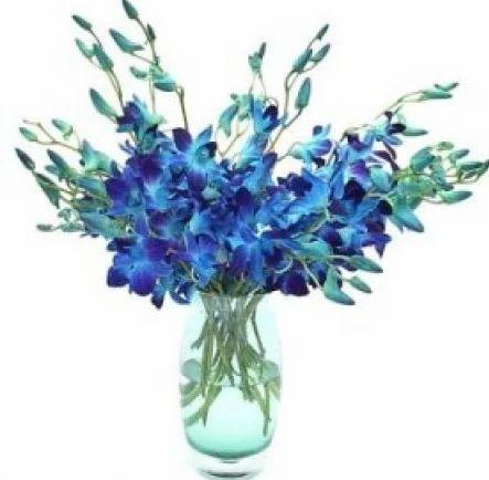 222 & Blue Orchids In Vase 12 Stem Of Flowers