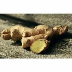 Fresh Ginger Root, Packaging Type: Plastic Or Polythene Bag