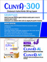 Clindamicine 1.00 %    Nicotinamide 4.0%  Gel