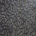Python Black Marble