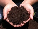 Neem Vermi Compost