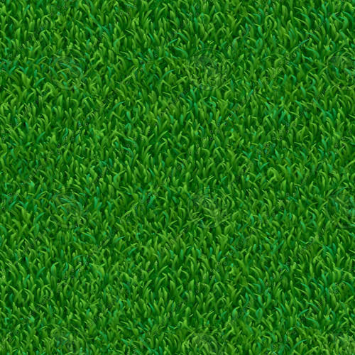 Pe Indoor Grass Carpet Rs 100 Square Feet Anmol