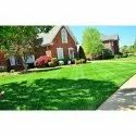 Back Yard Housing Areas Residential Landscaping Services, Coverage Area: <1000 Square Feet
