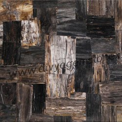 Retro Black Petrified Wood Slab