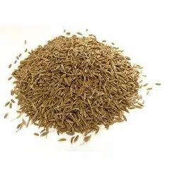 Chet Spice 12 Months Cumin Seeds