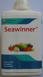 Seawinner