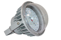 LED Well Glass Industrial Light