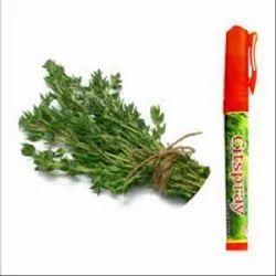 Basil Natural Essential Oil