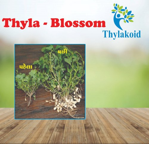 Thyla-Blossom, Packaging Type: Bottle