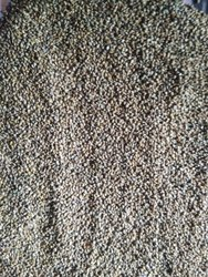 Super Food Brown Top Millet