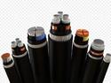 Lt Pvc / Xlpe Control Cables