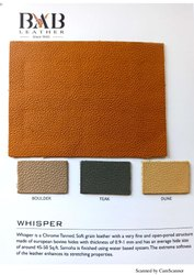 Leather Hide