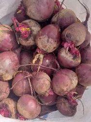 Maharashtra Fresh Beetroot, Packaging Size: 50 Kg