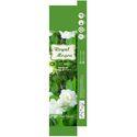 Royal Mogra Premium Masala Sticks