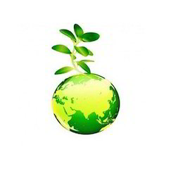 Environment Clearance Service