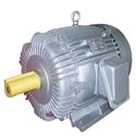 Havells Induction Motors