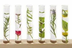 Herbs Testing Analysis Laboratory Service