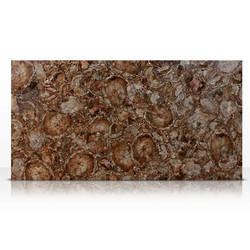 Petrified Wood Semi Precious Slab