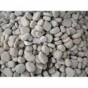 Mixed Colour Natural Flat River Pebbles