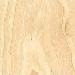 Poplar Core Veneer