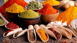Spice Testing Services