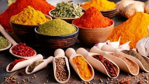 Food Testing Services - Spice Testing Services Manufacturer from