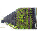 Outdoor Green Wall Garden