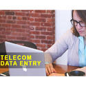 Telecom Form Filling Work