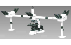 Penta Head Microscope