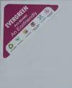 Evergreen Polyurethane Foam Sheet Pvc Sheet For Industrial