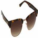 Male Wayfarer Sunglasses