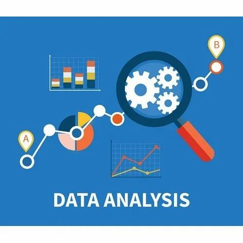 Data Analysis Service