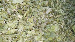 ARYAN flake Dried Spinach Leaves, Packaging Size: 20 Kg